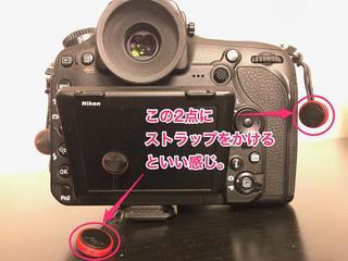 IMG_7421-2.jpg